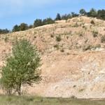 2017 09 23 (Cacciano-Curino) European Minerals Day 322